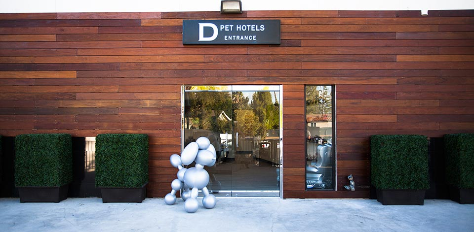 Gallery d pet hotels austin for Pooch hotel west los angeles